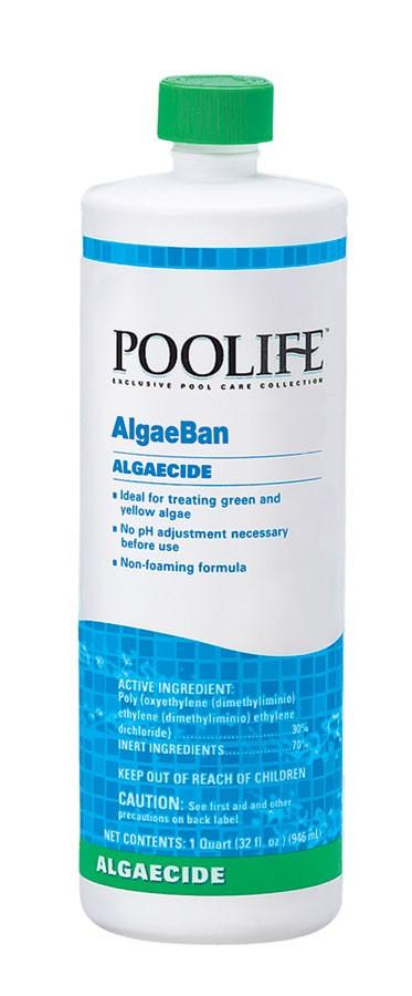 Algae Ban 2, 1 Quart